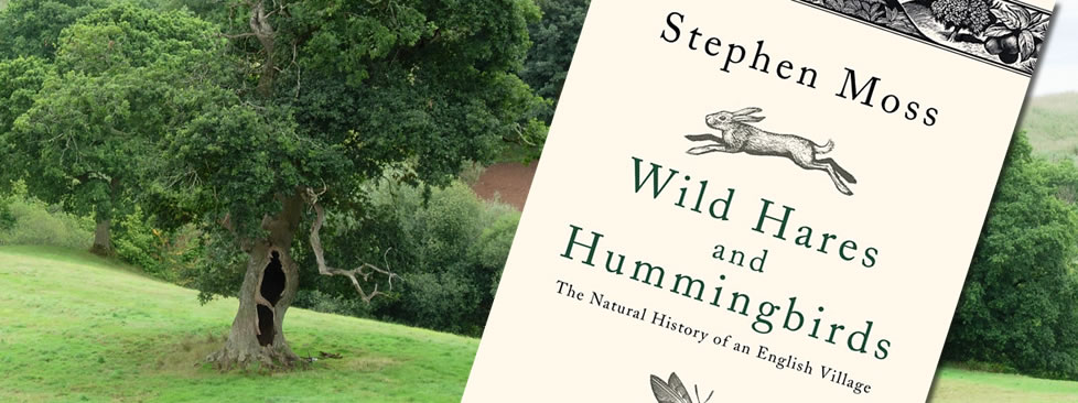 Wild Hares and Hummingbirds by Stephen Moss